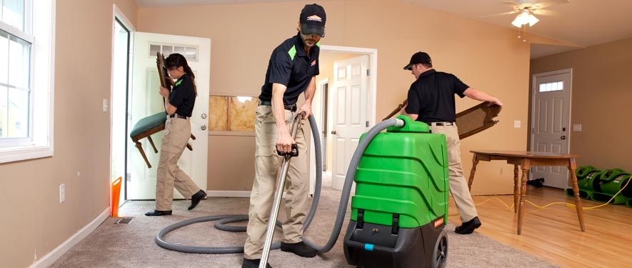 Livingston, NJ cleaning services